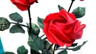 Букет от оригами Рози